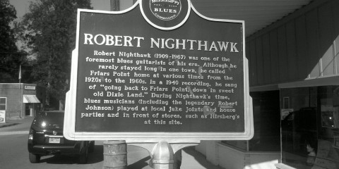 Robert_nighthawk