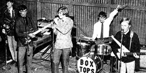 box_tops